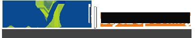 Anmol Share Broking Logo
