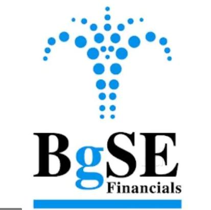 BGSE Financials Ltd Logo