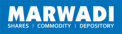 Marwadi Shares And Finance Ltd Logo