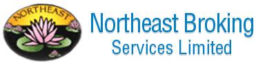 Northeast Broking Services Logo
