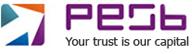 Pune E Stock Broking Pvt Ltd Logo
